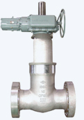 Electric Motor Operated Pressure Seal Gate Valve for NSSS