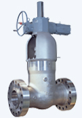 Electric Motor Operated Parallel Slide Gate Valve for NSSS