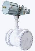 Cryogenic Butterfly Valves